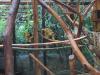 zoo_lj5_razred_2020_21_007